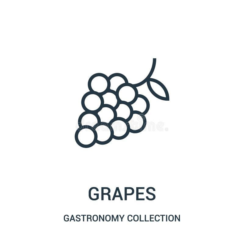 de vector van het druivenpictogram van de inzameling van de gastronomieinzameling De dunne van het het overzichtspictogram van li royalty-vrije illustratie