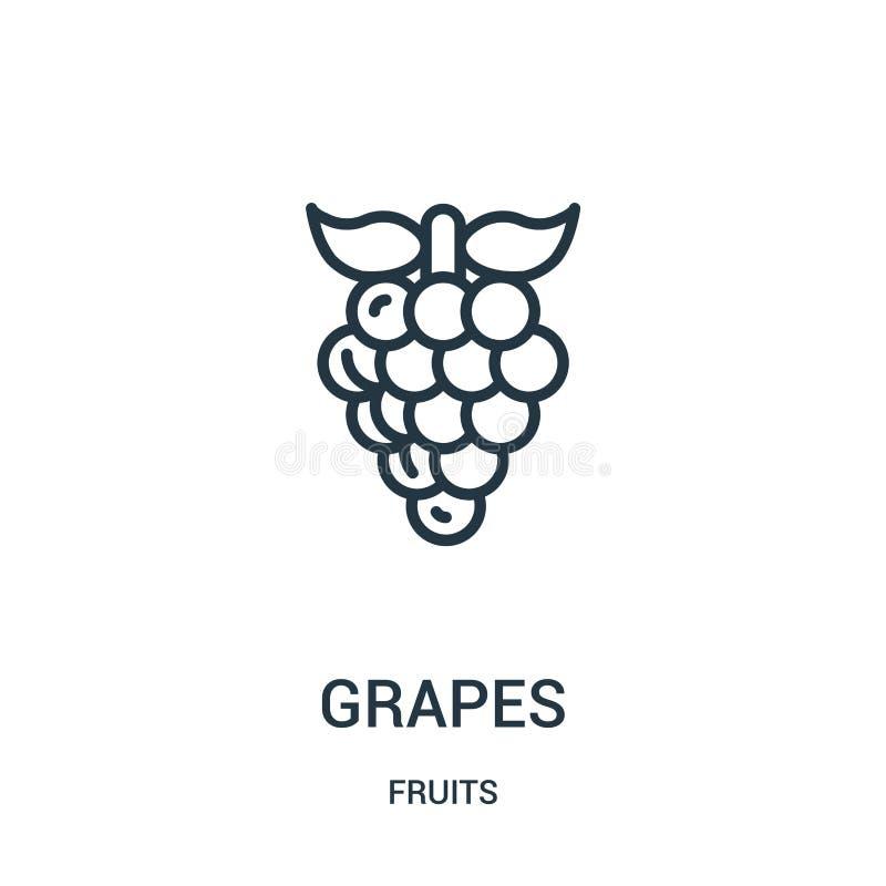 de vector van het druivenpictogram van vruchten inzameling De dunne van het het overzichtspictogram van lijndruiven vectorillustr stock illustratie