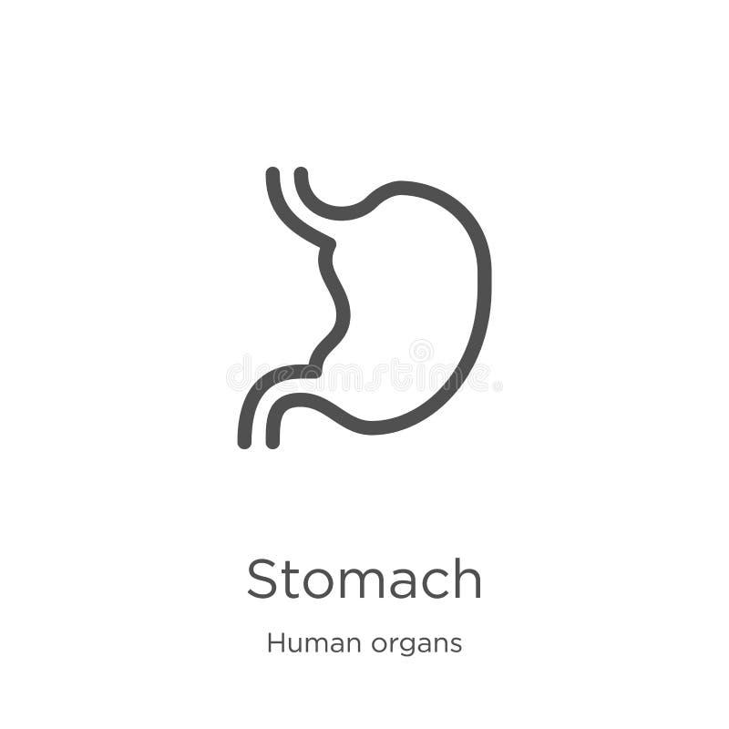 de vector van het maagpictogram van menselijke organeninzameling De dunne van het het overzichtspictogram van de lijnmaag vectori royalty-vrije illustratie