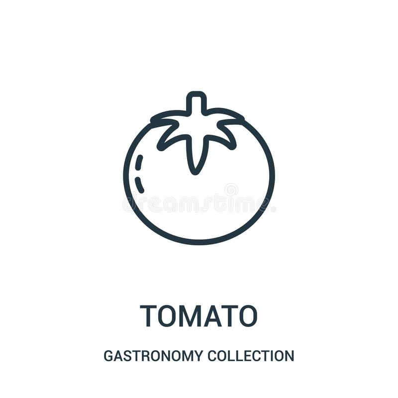 de vector van het tomatenpictogram van de inzameling van de gastronomieinzameling De dunne van het het overzichtspictogram van de stock illustratie