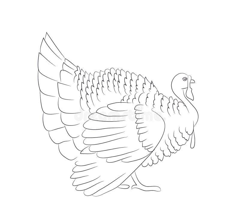 De vector van de de lijntekening van dankzeggingsturkije stock illustratie