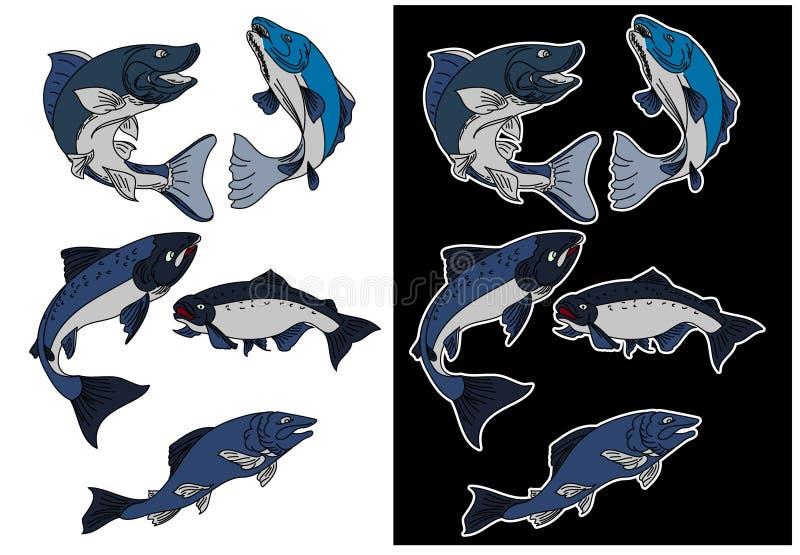 De vector van zalmvissen die op achtergrond wordt geplaatst stock illustratie