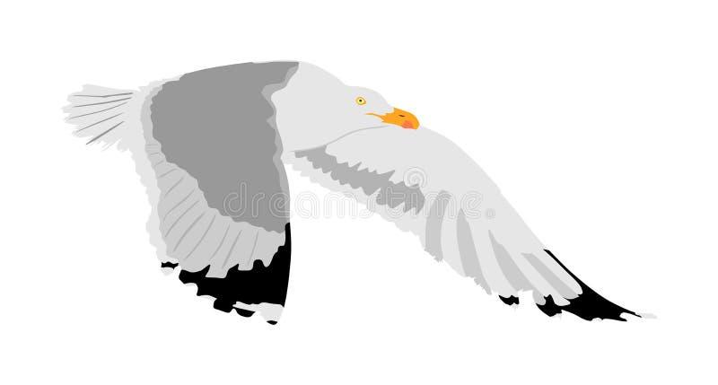 De vector van de zeemeeuwvlieg op witte achtergrond, uitgespreide die vleugels wordt geïsoleerd Het silhouet van de vogelvlieg Vr vector illustratie