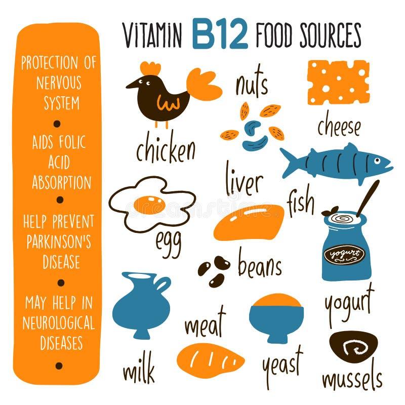 De vectorbeeldverhaalillustratie van VitaminB 12 bronnen en informatie over het profiteert Infographicaffiche vector illustratie