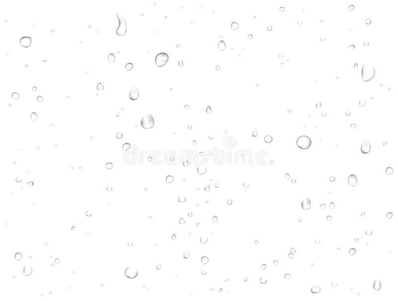De vectordalingen van het regenwater op witte achtergrond Zuivere realistische gecondenseerde druppeltjes royalty-vrije illustratie
