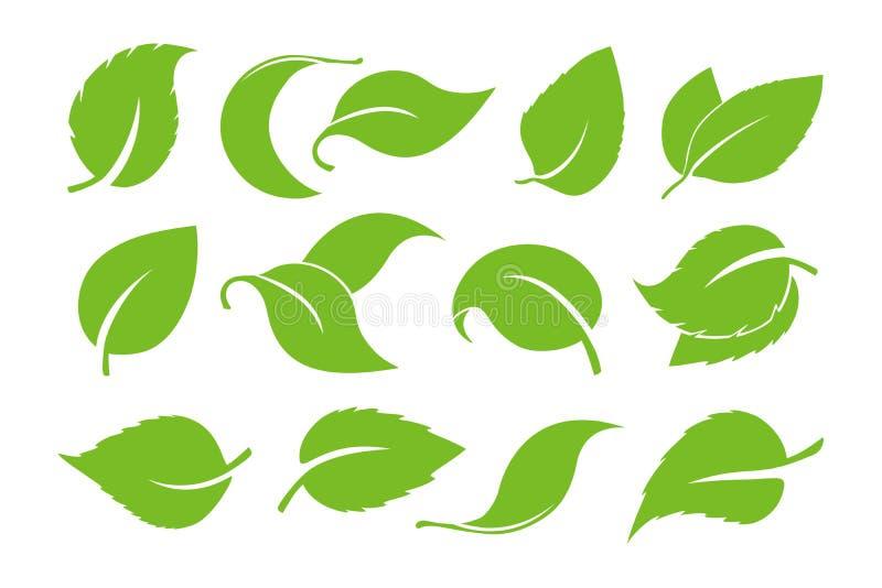 De vectordiereeks van het bladerenpictogram op witte achtergrond wordt geïsoleerd Diverse vormen van groene bladeren van bomen en stock illustratie