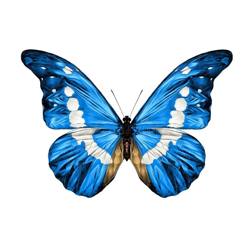 De vectorgrafiek van de vlinderschets stock illustratie