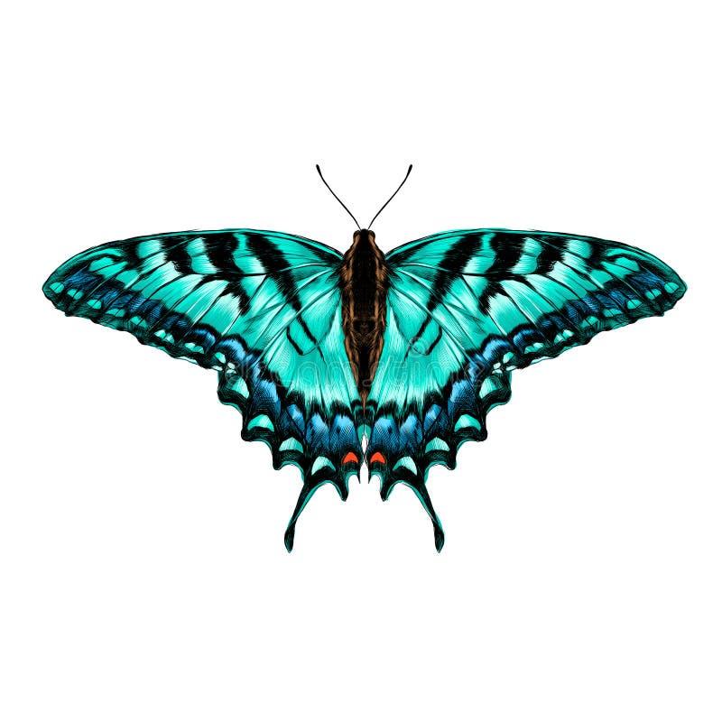 De vectorgrafiek van de vlinderschets vector illustratie