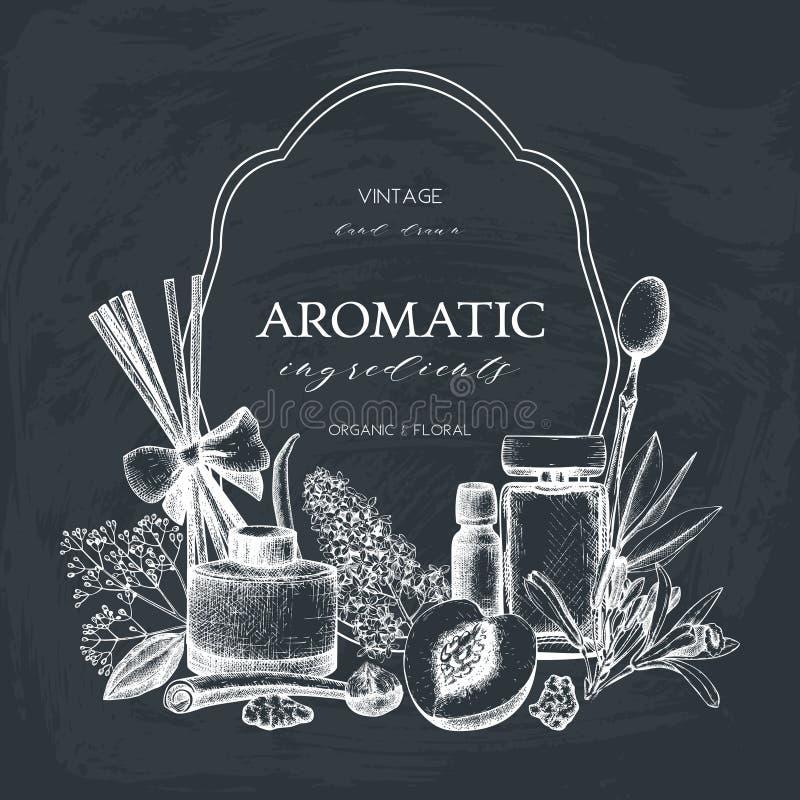 De vectorhand getrokken Parfumerie en illustratie van schoonheidsmiddeleningrediënten Aromatische en geneeskrachtige installatieo royalty-vrije illustratie