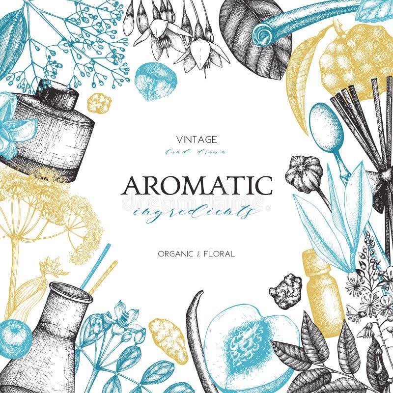De vectorhand getrokken Parfumerie en illustratie van schoonheidsmiddeleningrediënten Aromatische en geneeskrachtige installatieo stock illustratie