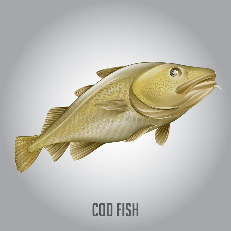 De vectorillustratie van kabeljauwvissen stock fotografie