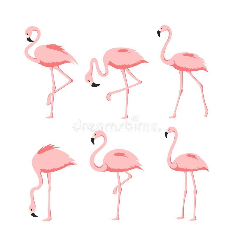 De vectorillustratiereeks Mooie elegante roze flamingo's in verschillend stelt op witte achtergrond, exotische tropisch royalty-vrije illustratie