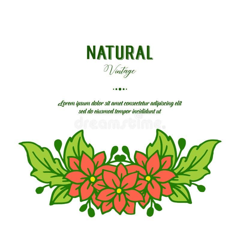De vectorillustratieschoonheid van groene bladbloemkaders bloeit voor de natuurlijke wijnoogst van de groetkaart stock illustratie