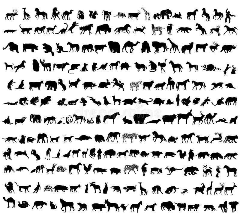 De vectorinzameling van dieren royalty-vrije illustratie