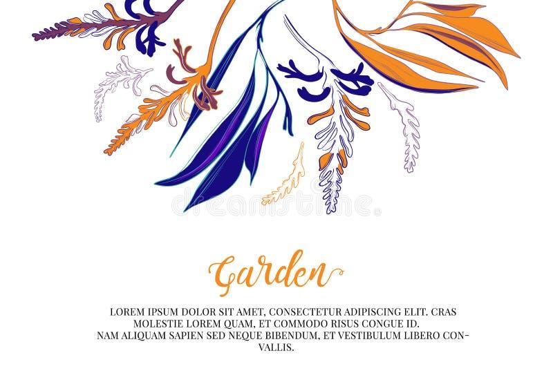 De vectorkaart van de bloemgroet Modern contrastontwerp Botanisch kunstwerk voor verjaardag, groetkaarten, huwelijksdecoratie, em royalty-vrije illustratie