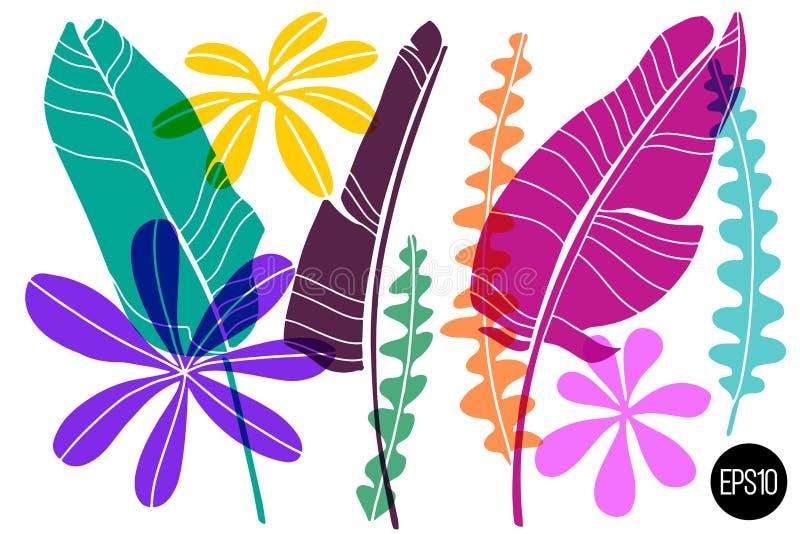 De vectorreeks getrokken tropische bladeren, kleurrijke artistieke botanische illustratie, isoleerde bloemenelementen, getrokken  vector illustratie