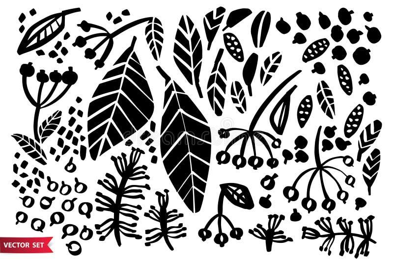De vectorreeks kruiden van de inkttekening, bloemen, zwart-wit artistieke botanische illustratie, isoleerde bloemenelementen, han vector illustratie