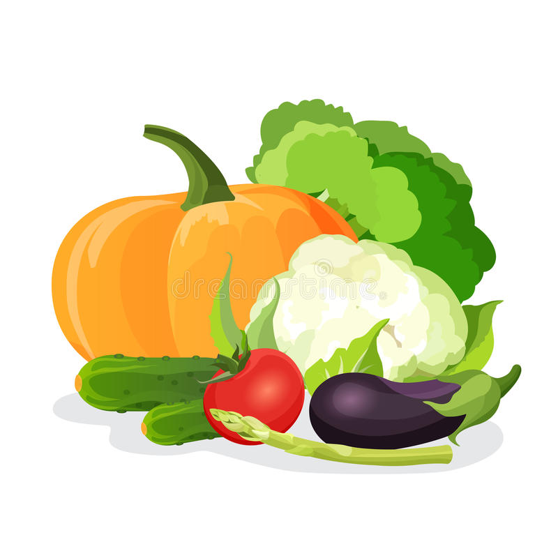 De vectorreeks van groenten Aubergine, tomaat, kool, broccoli, komkommer, bloemkool, pompoen, stock illustratie