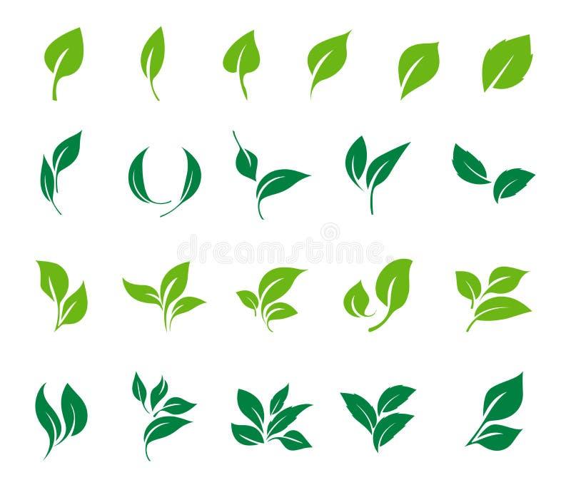 De vectorreeks van het bladerenpictogram Het pictogramreeks van de ecologie stock illustratie