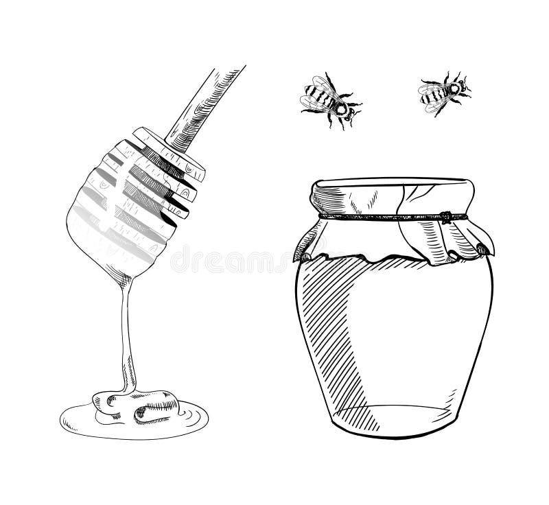 De VECTORreeks van Honey Sketches, Hand trekt Illustratie, Bkack-Lijntekeningen royalty-vrije illustratie