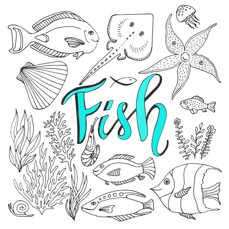 De vectorreeks van schetsenvissen Hand getrokken vector mariene reeks stock illustratie