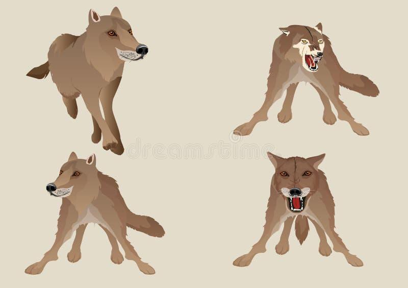 De vectorreeks wolven isoalated op wit stock illustratie