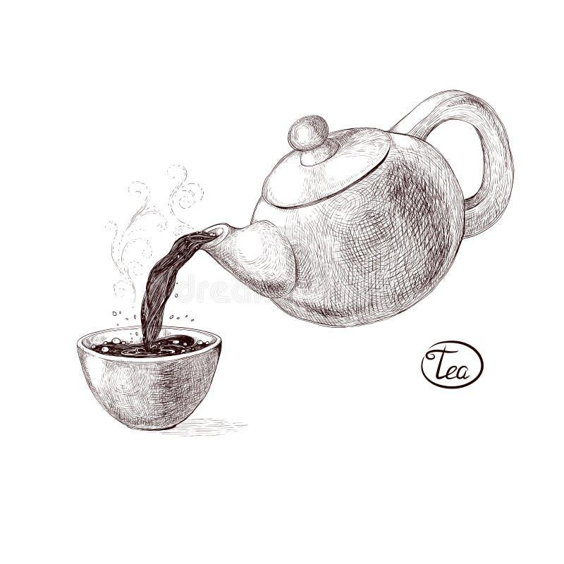 De vectorschetsillustratie van verse gelaste hete en op smaak gebrachte ochtendthee van de theepot goot in het theekopje drank vector illustratie
