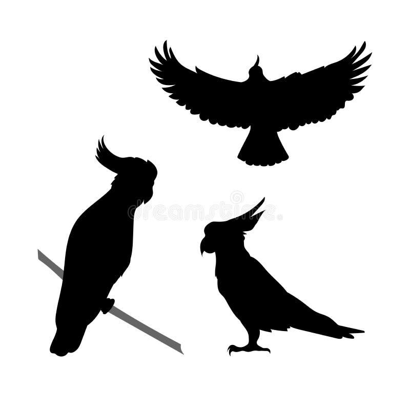 De vectorsilhouetten van de kaketoevogel vector illustratie