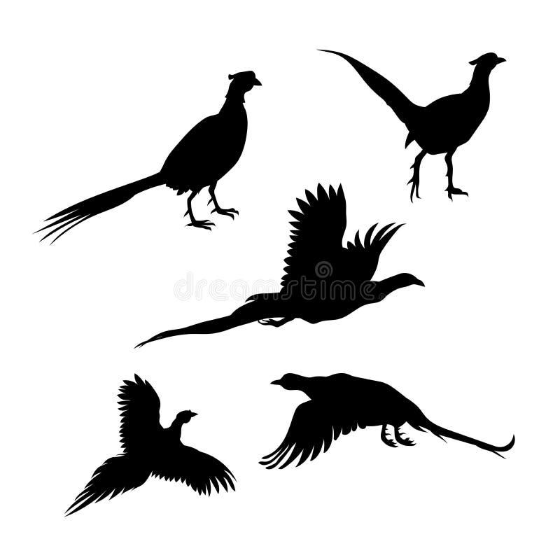 De vectorsilhouetten van de vogelfazant stock illustratie