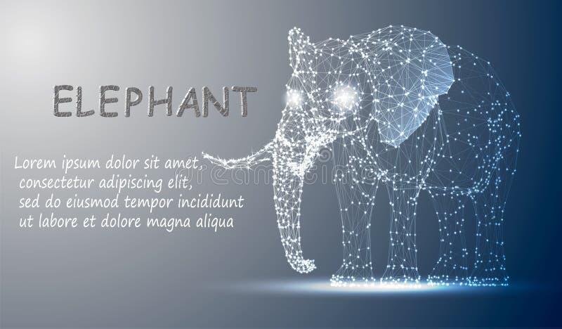 De veelhoekige lijnen vatten vectorsteekproefillustratie met ruimteolifant op de achtergrond van de kleurennacht samen vector illustratie