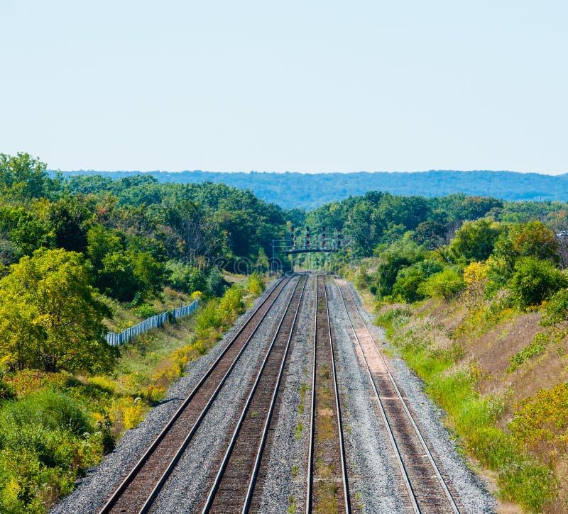 De veelvoudige rubriek van spoorwegsporen in bebost gebied in Burlington, Ontario, Canada stock afbeeldingen