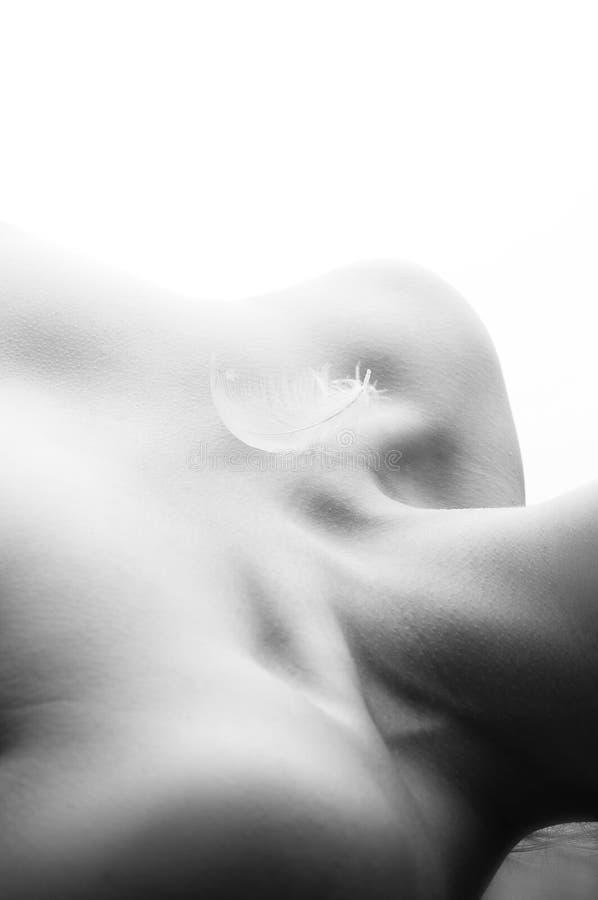 De veer ligt op het sleutelbeen van de vrouw stock fotografie