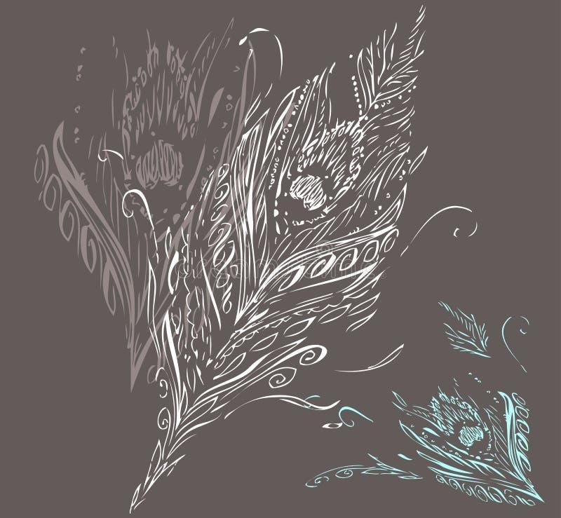 De Veer van de pauw stock illustratie