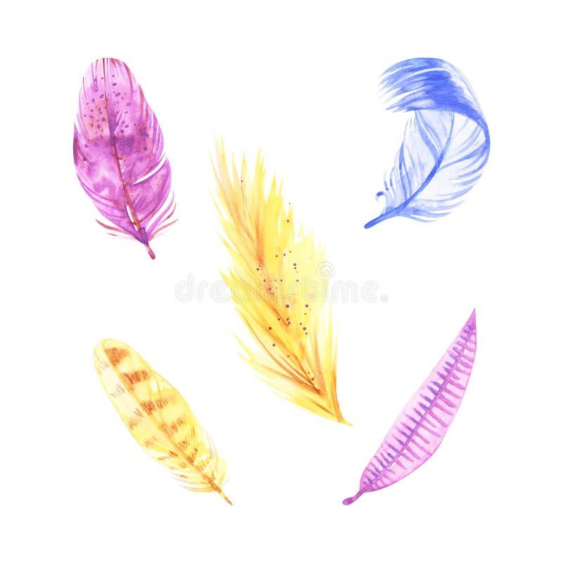 De veerillustraties van waterverfboho Pasen-de reeks van de klemkunst, op witte achtergrond wordt ge?soleerd die stock illustratie