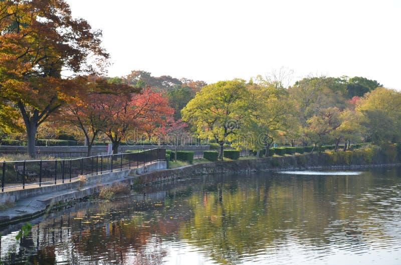 De verandering Japan van de de herfstkleur royalty-vrije stock afbeeldingen