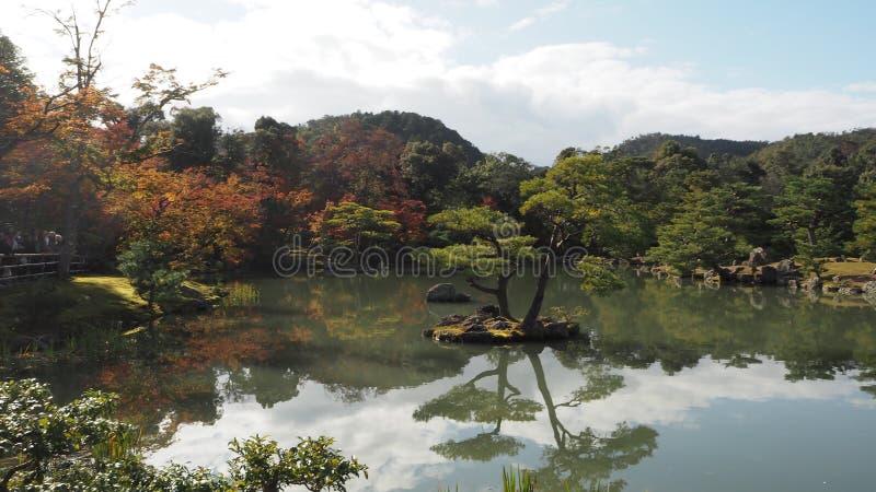 De verandering Kyoto Japan van de bladerenkleur royalty-vrije stock foto