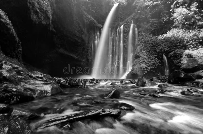 De verbazende fijne Waterval van kunst zwart-witte Tiu Kelep dichtbij Rinjani, Senaru Lombok Indonesië De Kayan-mensen zijn een s stock foto