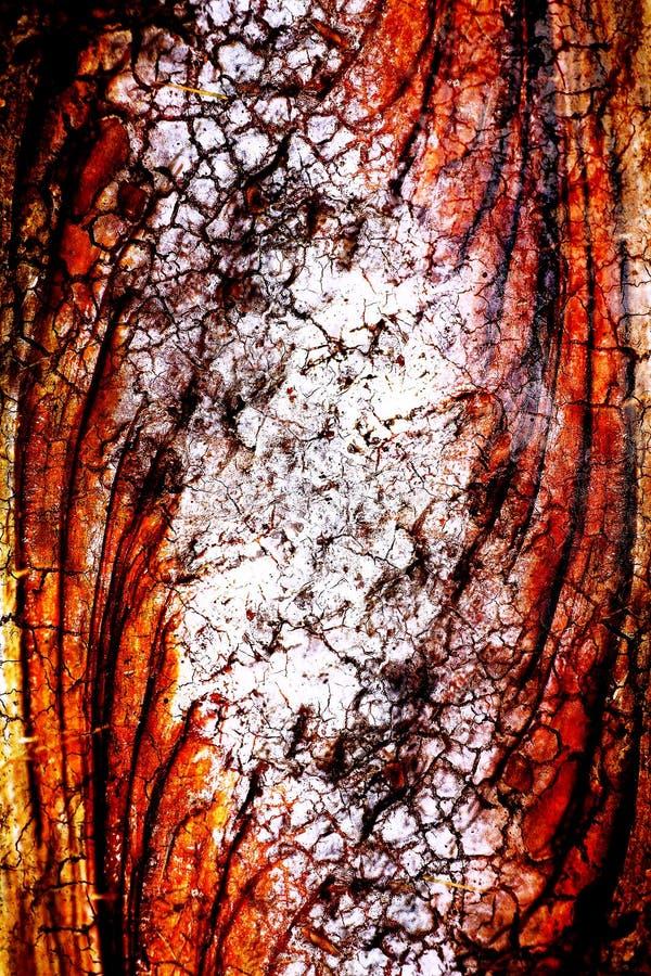 De verbazende kleurrijke overgehaalde abstracte achtergrond van de boombrunch royalty-vrije stock foto