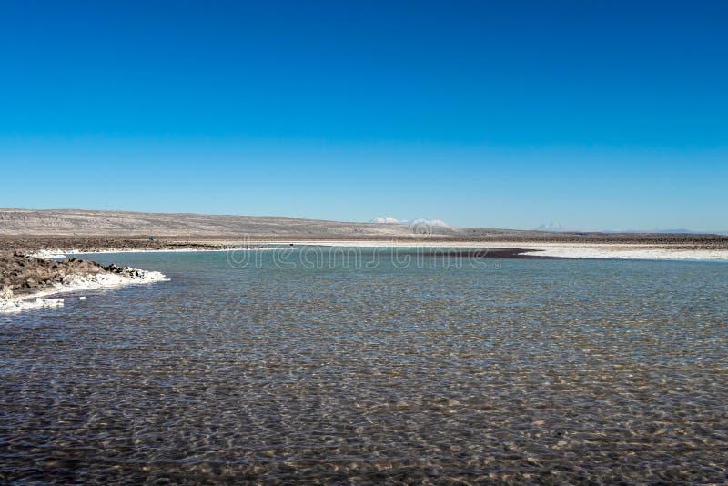 De verborgen altiplanic lagunes van Lagunas Escondidas van Baltinache: zoute meren in Salar van Atacama-woestijn, Chili stock foto's
