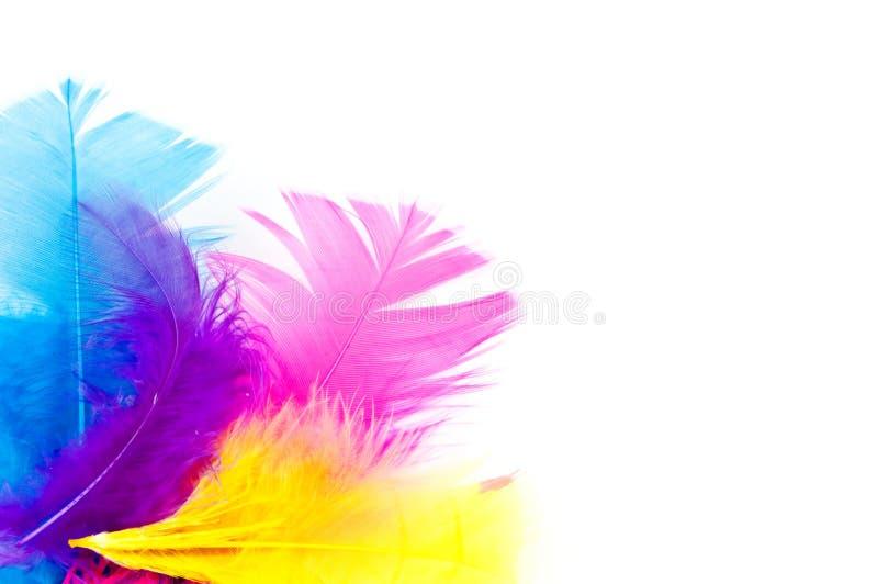 De veren van Colorfull met exemplaar-ruimte royalty-vrije stock foto's
