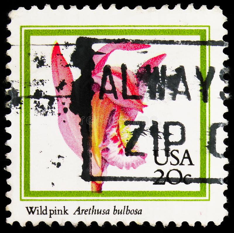 In de Verenigde Staten gedrukt poststempel toont Arethusa bulbosa - Dragon\'s Mouth Orchid, Orchids Issue serie, circa 1984 royalty-vrije stock foto's