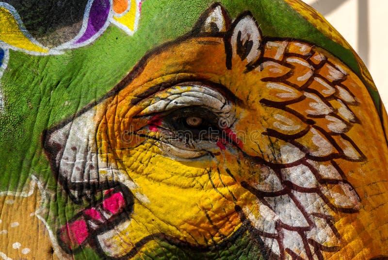 De verf van het tijgergezicht, olifantscanvas royalty-vrije stock afbeeldingen