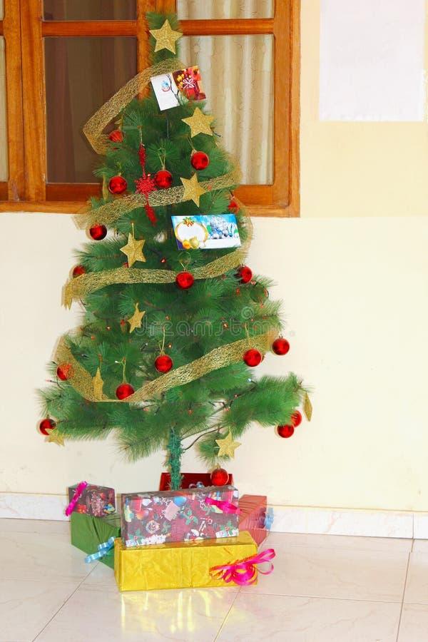 De verfraaide Kerstboom stelt, Kaapverdië, Afrika voor stock foto's