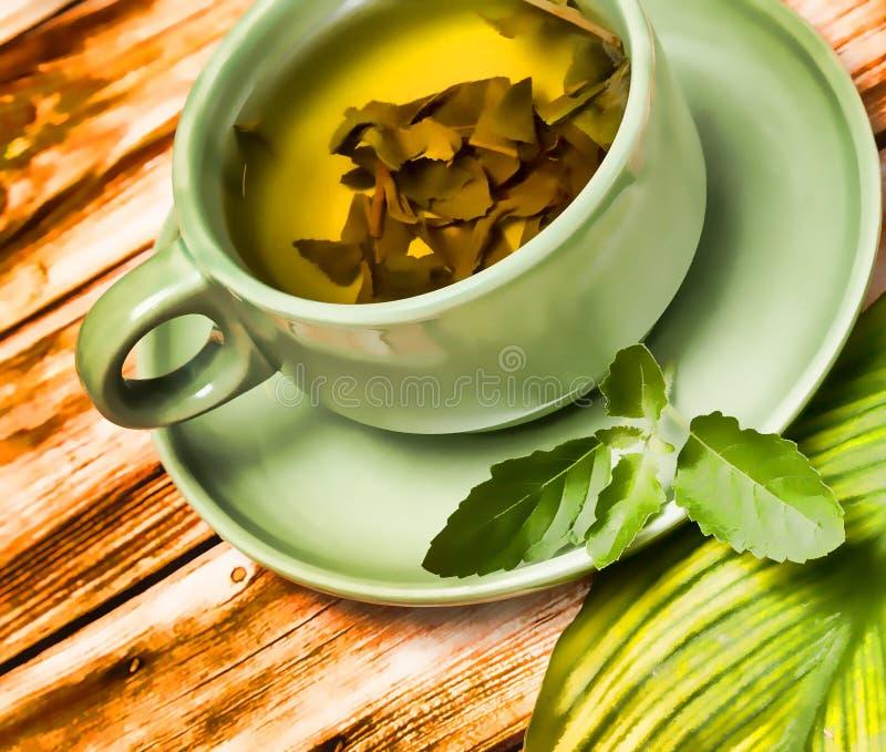 De Verfrissingen van de muntthee vertegenwoordigt Cafetaria'srestaurant en Koffie stock afbeeldingen