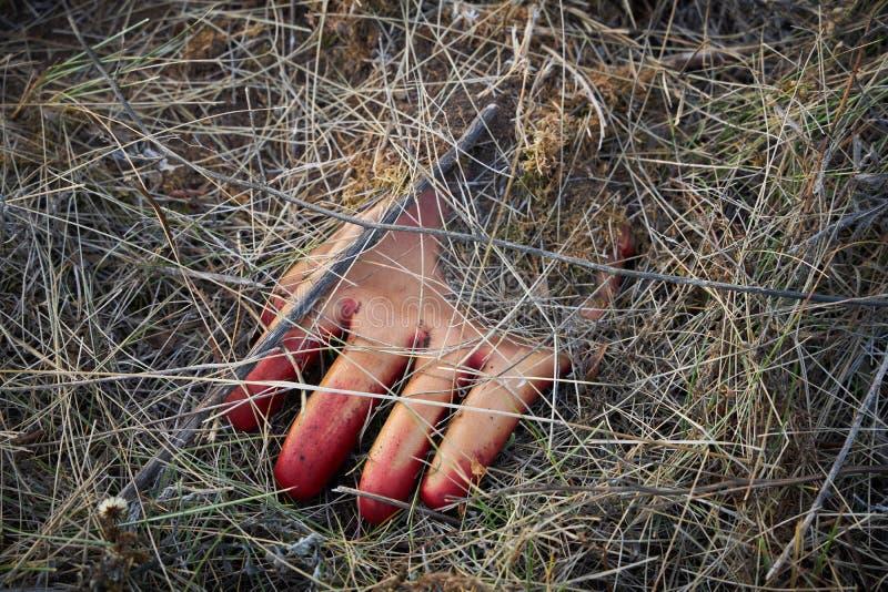 De vergeten rubberen handschoen met rode vingers ligt op de grond onder een laag droog gras stock fotografie