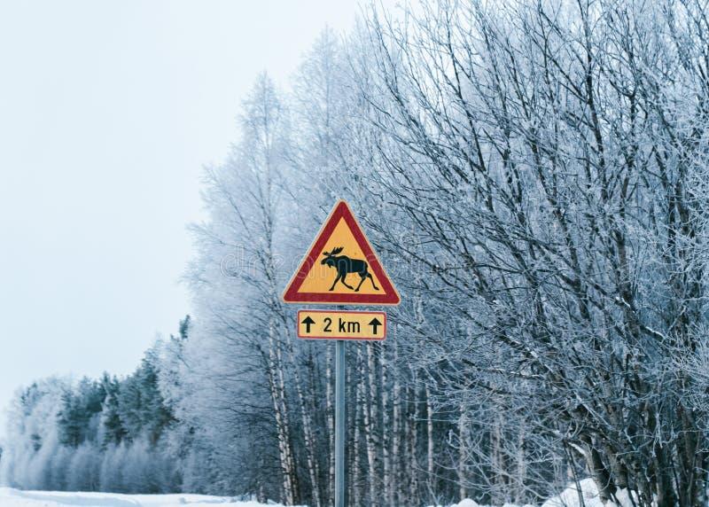 De Verkeersteken van het gevaarsrendier in de sneeuwwinter Lapland van de plattelandsweg stock foto