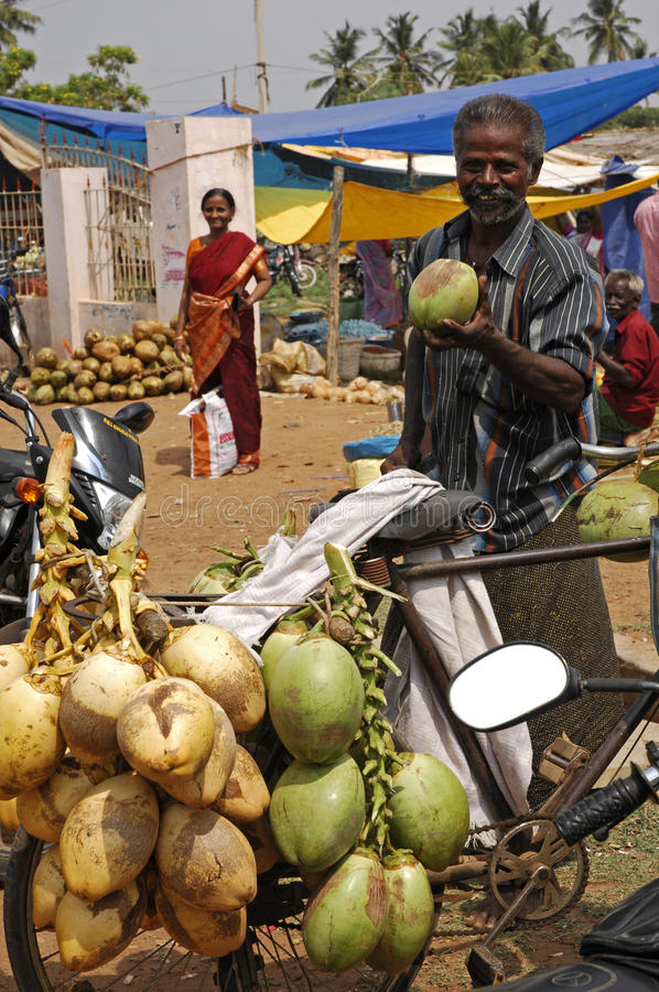 De verkoper India van de kokosnoot stock fotografie
