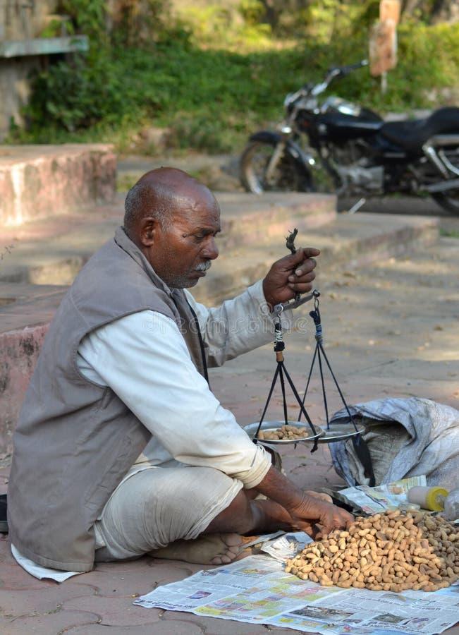 De verkoper India van de straatpinda stock afbeelding