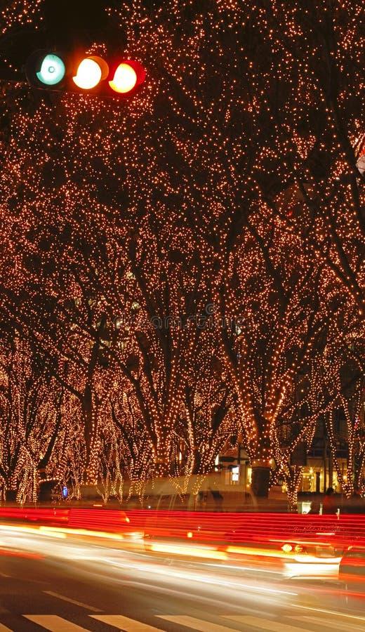 De verlichting F van Sendai December stock afbeelding