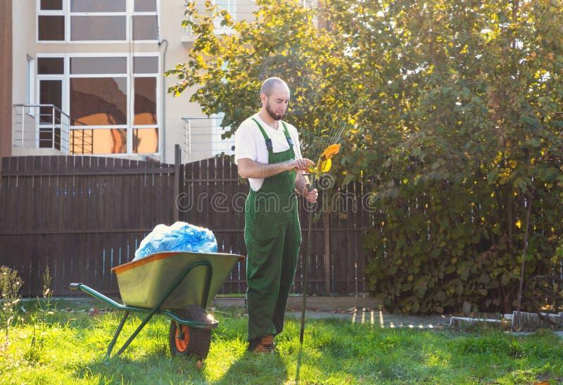 De vermoeide tuinman in groene eenvormig maakt de hark van de bladeren schoon Het tuinieren en yard het schoonmaken stock afbeeldingen